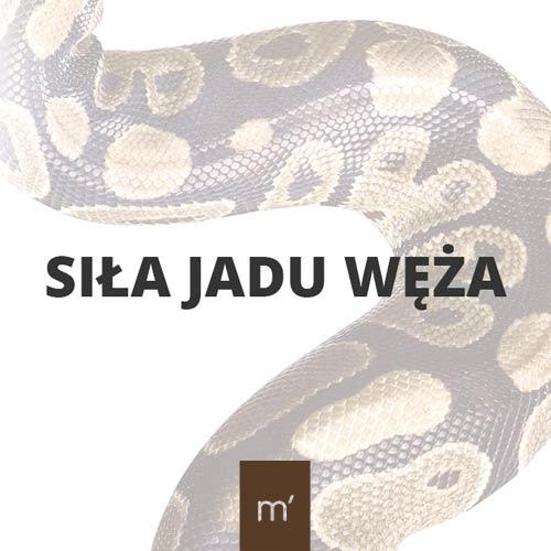 siła jadu węża